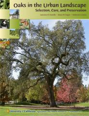 Oaks in the Urban Landscape