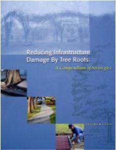 Roots Compendium Cover