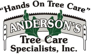 Andersons new logo 2011