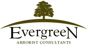 Evergreen Arborists Consultants