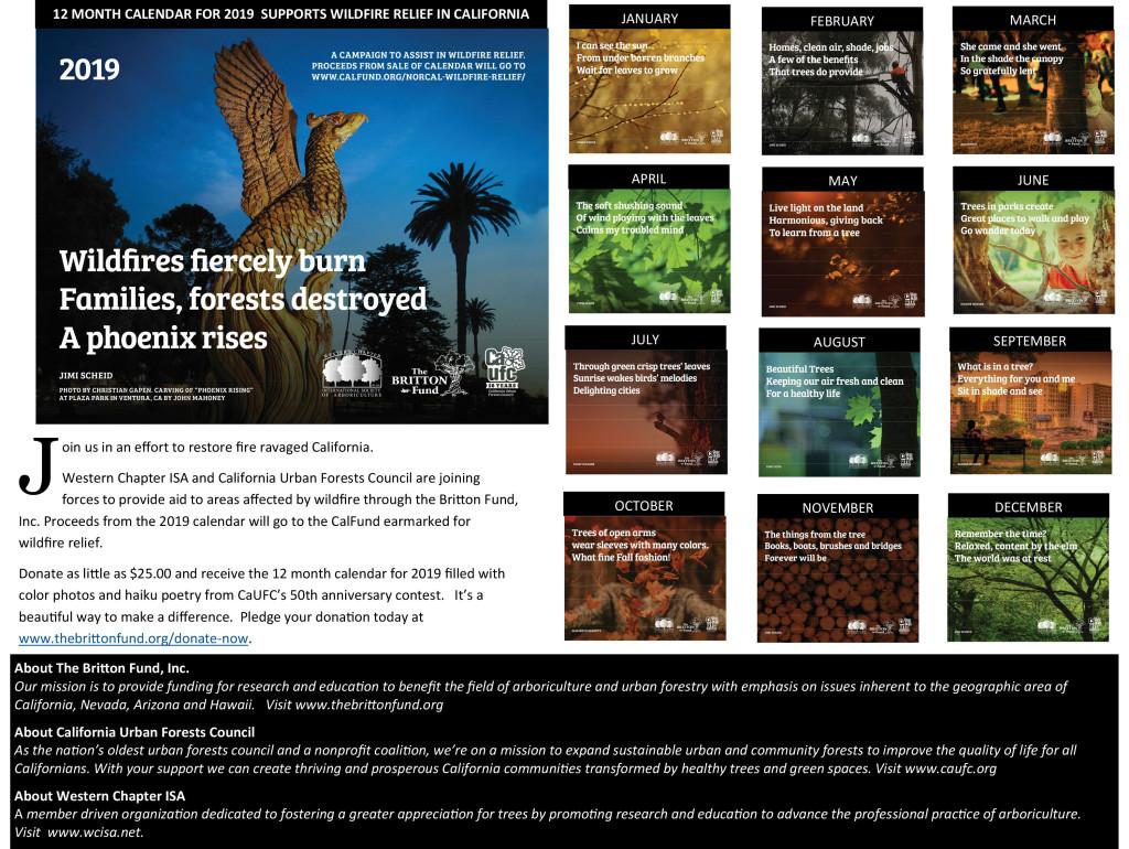 Wildfire Releif Campaign.pub