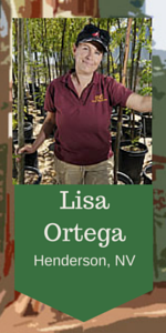 Lisa Ortega